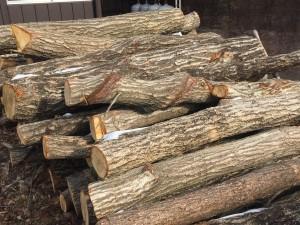 薪ストーブの薪を入手