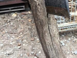 手斧で薪割り